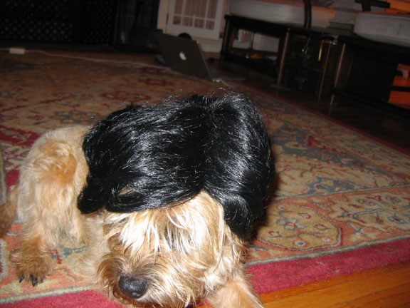 millie-wearing-a-wig