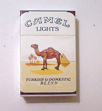 *camel-lights-34110