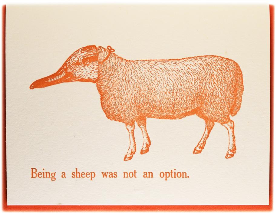 sheep-30-f8