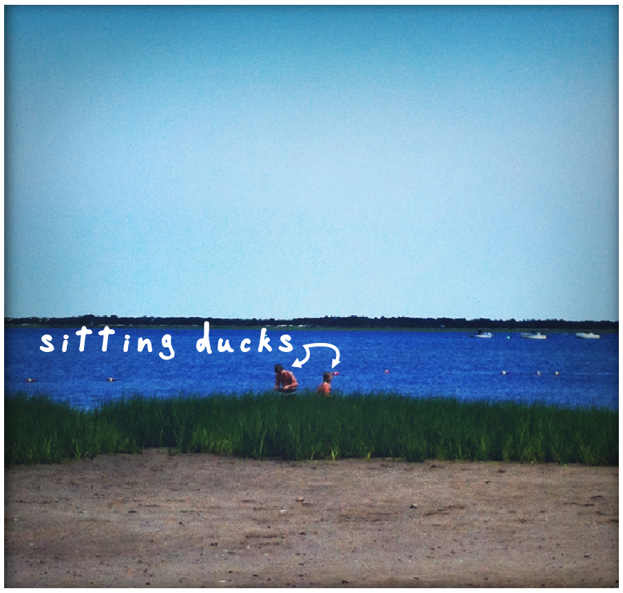 sitting-ducks