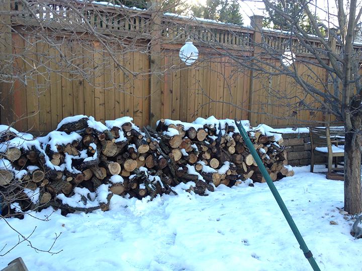 wood pile.IMG_7916