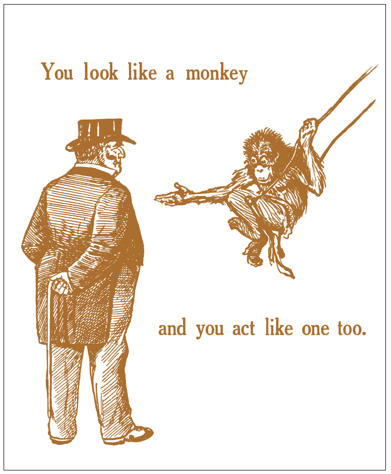 you-look-like-a-monkey