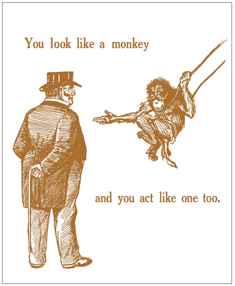 you-look-like-a-monkey