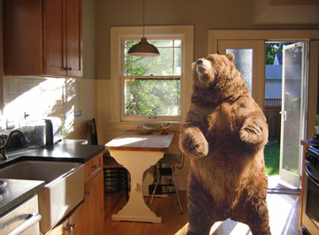 bear-in-the-kitchen1