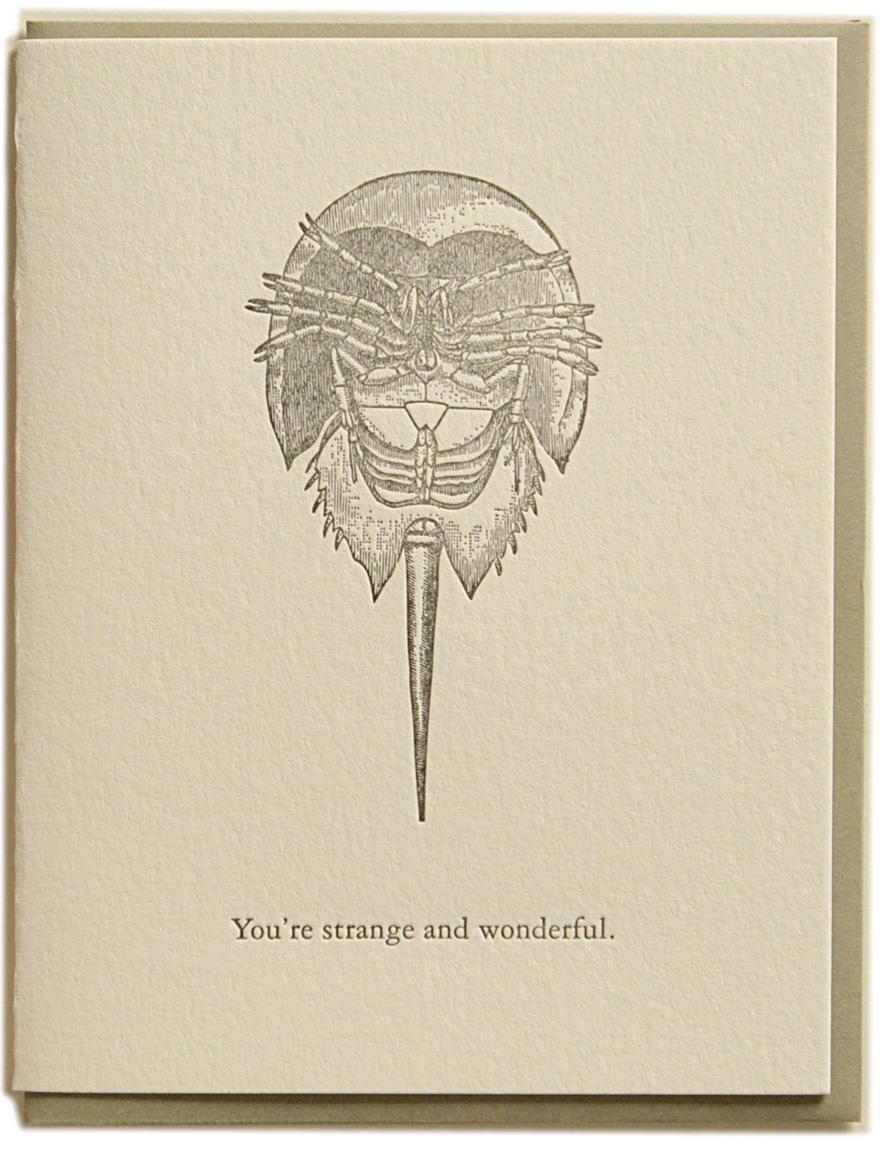 You're strange and wonderful. Letterpress printed on recycled paper. Comes with coordinating envelope and packaged in cellophane sleeve.